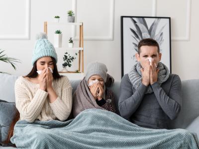 thumbnail of The Flu Virus