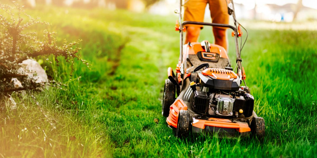 banner of Lawn Care & Maintenance