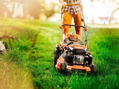 thumbnail of Lawn Care & Maintenance