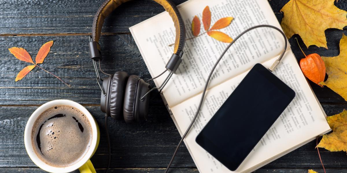 banner of Audio Books Explained