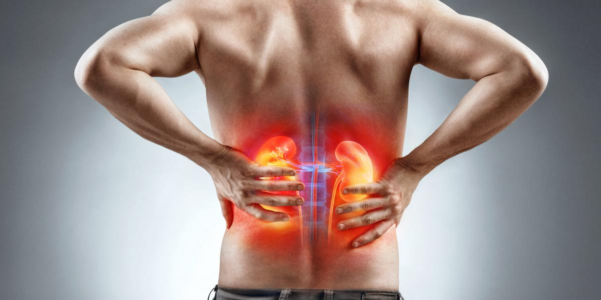 banner of Kidney Problems are Common and Varied