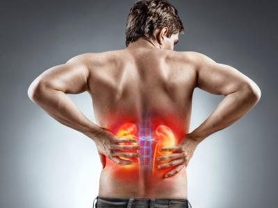 thumbnail of Kidney Problems are Common and Varied