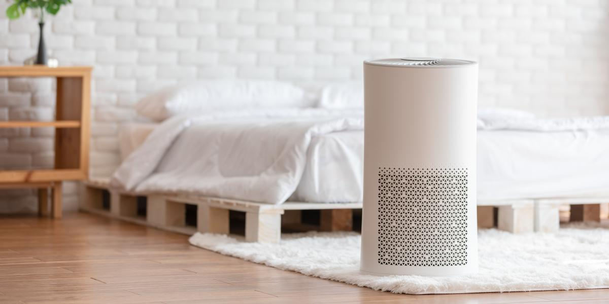 banner of An Air Purifier Can Improve Your Home's Air Quality