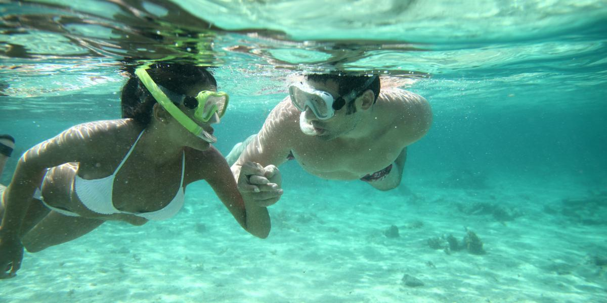 banner of Snorkeling Provides Fun and Beautiful Unexpected Views