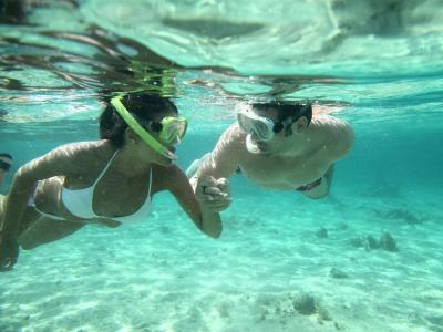 thumbnail of Snorkeling Provides Fun and Beautiful Unexpected Views